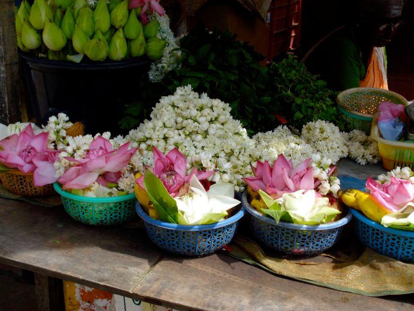 Chidambaram lotus