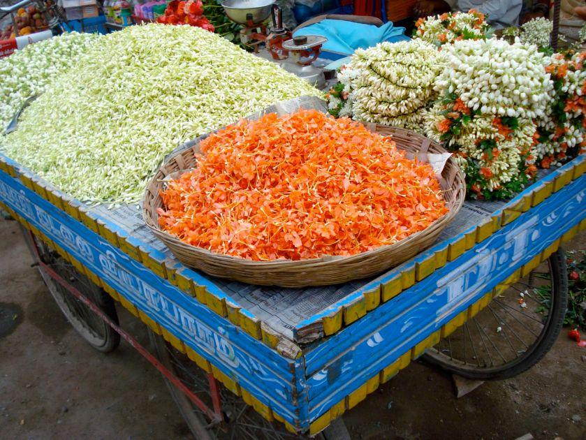 Tiruvannamalai - flowers