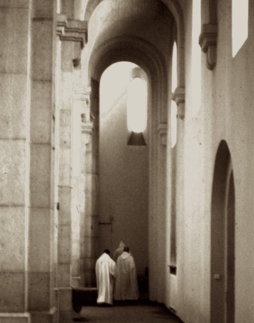 lerins interno monaci